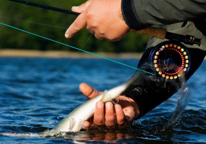 Jonas fishing, fiske, flugfiske, fiskekurs, fiska i Sälen, Sälenfjällen