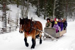 Lindvallens Fäbod, boka möte, levande fäbod, häst och vagn, konferens i Sälen, Lindvallen