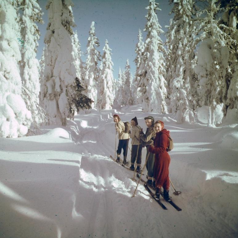 Skidor i Sälen, Jonas i Sälen, skidor, längd, Mickelsbo, Transtrands Hembygdsförening