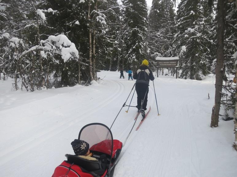 Kalven runt, Lindalens Fäbod, längd, längdåkning, skidspår, Lindalen, Tandådalen