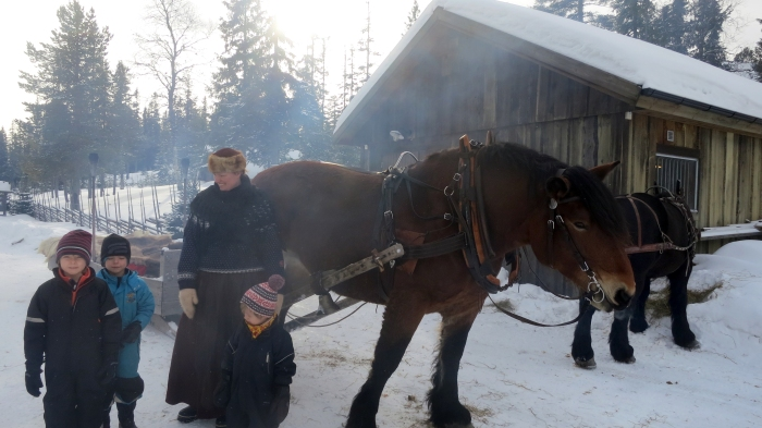 Lindvallens Fäbod, häst och släde, Ardenner, hästar, Jonas i Sälen, Barnens Fäbod