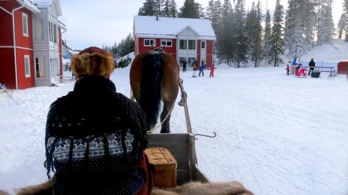 Häst och släde, Lindvallens Fäbod, Lindvallen, Jonas i Sälen, Sälen