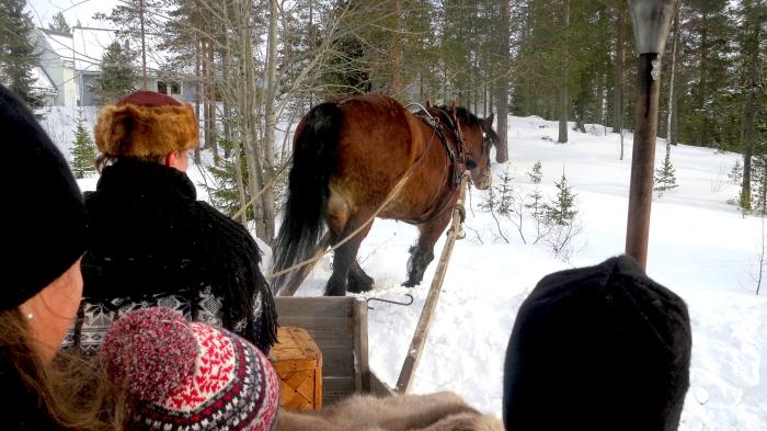 Häst och släde, Lindvallens Fäbod, levande fäbod, fäbodcafé, café, Jonas i Sälen