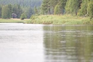 Öring, trouthunt, Dalarna, fiska, fiskeäventyr, fiske i Sälen, fiskeguide, Jonas i Sälen, Gattar, Sälenfjällen, fjällfiske