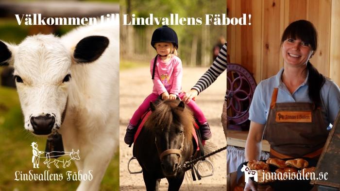Sommaröppet, barnaktivitet, familjeaktivitet, ponny, ponnyridning, levande fäbod, café, lunch, Sälen, Sälenfjällen, Jonas i Sälen, Lindvallens Fäbod