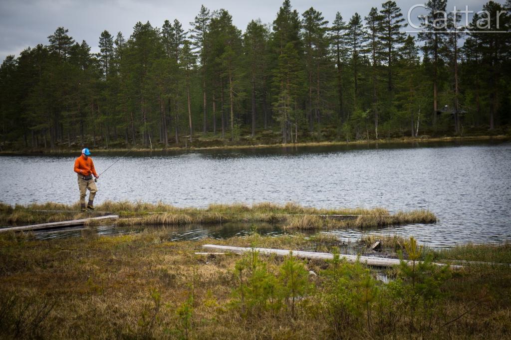 flugfiske, flyfishing, fjällfiske, fjällflugfiske, fiskevatten, fiskehistorier, Jonas i Sälen, Gattar, Jonas Fishing, flyfishing Scandinavia