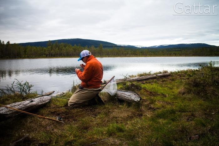 fiske sälen, fiske dalarna, fishing sälen, fly fishing, sälenfiske, Jonas i Sälen, fishing scandinavian mountains, fiskekurs, flugfiskekurs