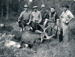 Birk Jagd, Auerhahn Jagd, Jagd, Elchjagd, Sälen, Jonas Hunting, Tjäderjakt, capercaillie hunt , Scandinavian Mountains