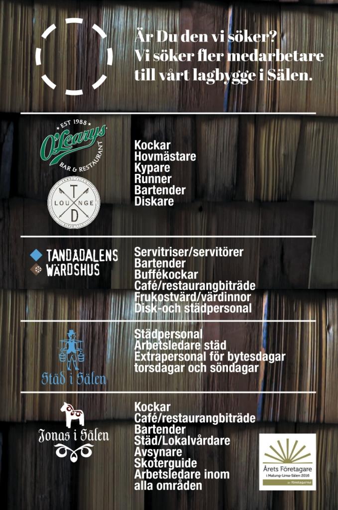 Jobba i Sälen, Sälenjobb, Jonas i Sälen, årets företagare, kock, bartender, serveringspersonal, städare, diskare, kypare, cafébiträde, restaurang, Sälen, söka jobb, extrajobb