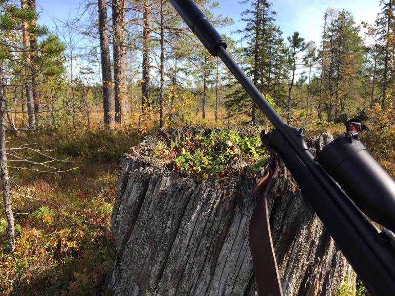 älgjakt, jaga älg, älg, jakt, hunting, Jonas i Sälen, Jonas i Sälen Game Fair, Östfjällets Fäbod, jaktlag, Sälen, Sälenfjällen