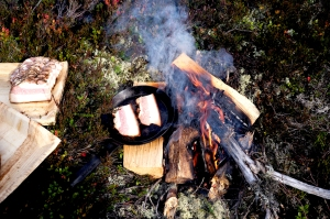 konferens, Conference Sälen, large cabin, moose watching, norrsken, Nothern lights, lägereld, scandinavian mountains, jonas i sälen, event sälen, wildlife, outdoor sälen