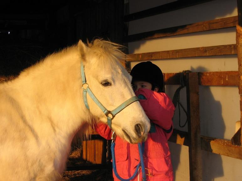 Ponnyridning, ponny, hästar, bran, barnaktiviteter, ponyrijden, Ponyreiten, pony rides, children's activity, Lindvallens Fäbod, lindvallen, Sälen, Jonas i Sälen