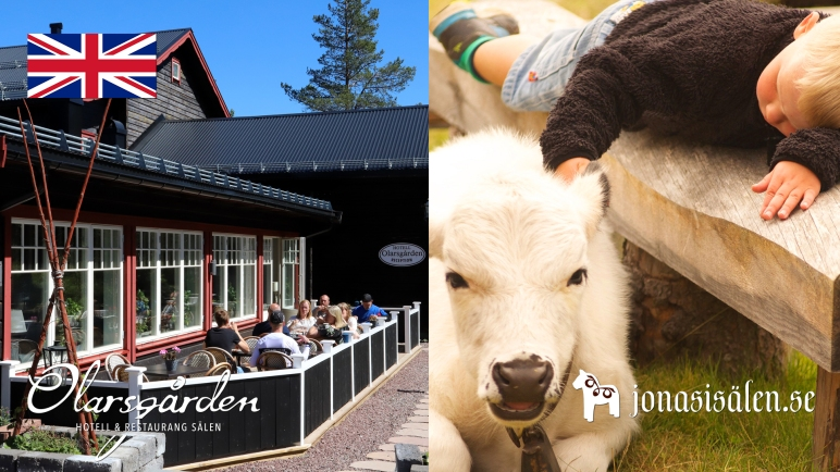hotel, restaurant, tourist information, Sälen, Dalarna, farm hill pasture, cafe, book a table, visit sälen, visit dalarna, authentic, genuine, local dishes, dinner, lunch, Lindvallens Fäbod, Jonas i Sälen, activities for children, fishing, fishing sälen, put and take, pony riding